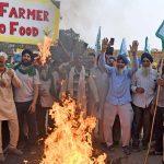 کشاورزان اعتراض می کنند: Govt به دنبال زمان بیشتری برای مشاوره در مورد تقاضای کشاورزان است.  جلسه بعدی در تاریخ 9 دسامبر |  اخبار